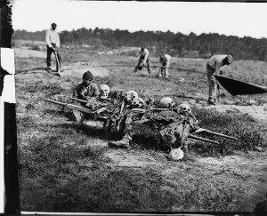 skeletten na veldslag - kopie