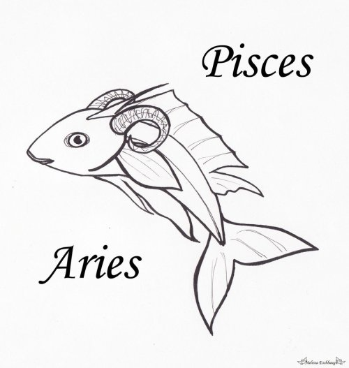 born-on-the-cusp-pisces-aries-when-both-the-day-and-night-are-of-equal-length-004-march-20th.jpg